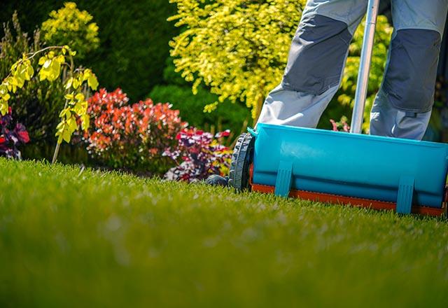 Nawóz do trawników