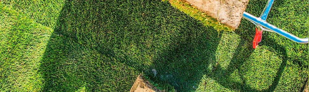 przygotowanie terenu pod trawnik rolowany krok po kroku
