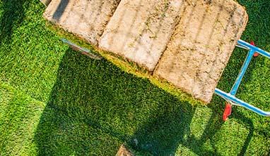 jak przygotować teren pod trawnik z rolki