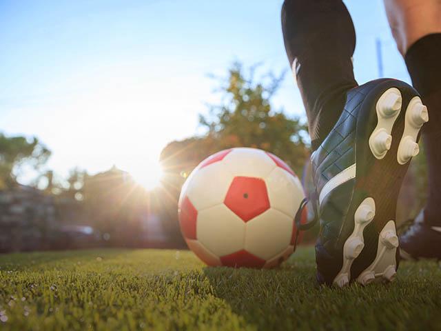 trawniki sportowe
