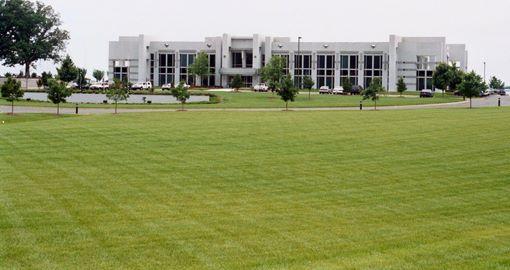 trawnik z rolki przy instytucji