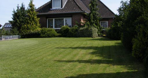 trawnik przydomowy
